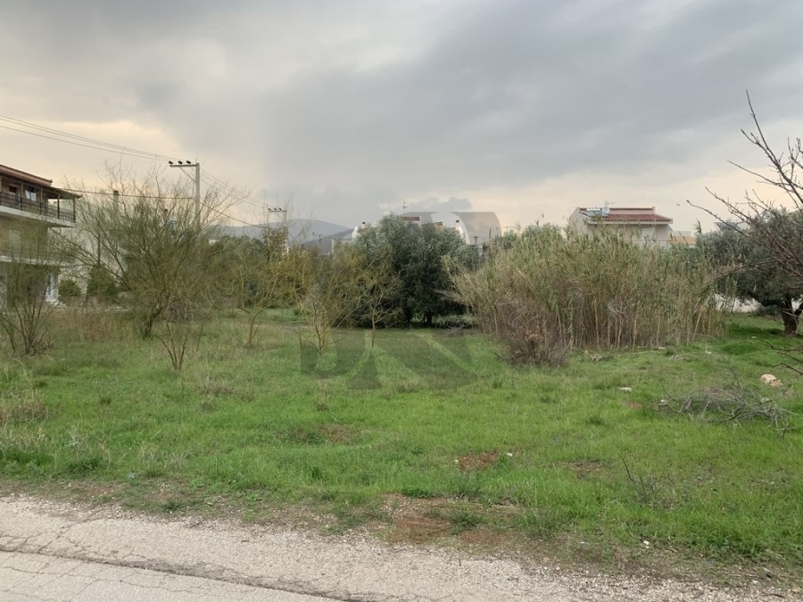 (For Sale) Land Plot || East Attica/Vari-Varkiza - 1.000 Sq.m, 450.000€